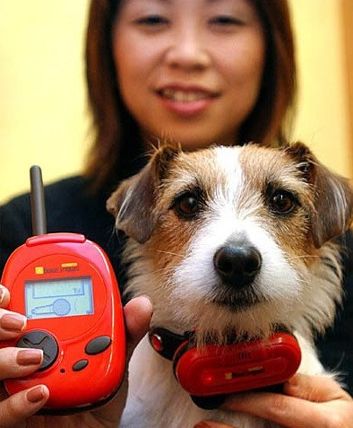 bowlingual traductor para perros