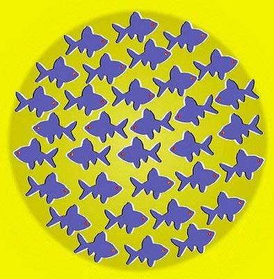 peces-no-mueven