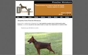 Pinscher Miniatura -- Desperta Ferro