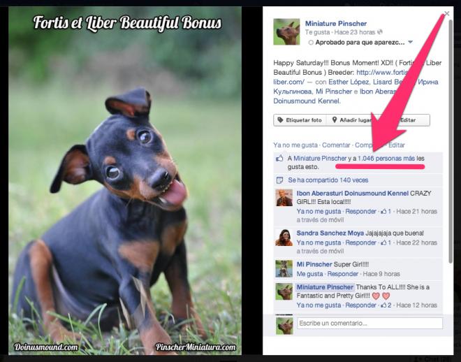 Fortis et liber 1000 likes facebook
