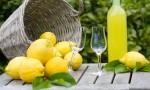 limoncello tradicional italiano receta